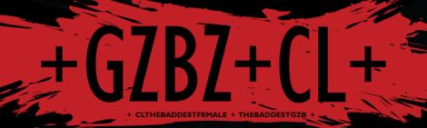 CL Hello Bitches Tour 2016 Hand Banner Design